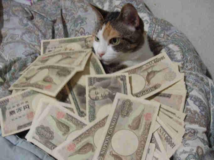 お金のお風呂